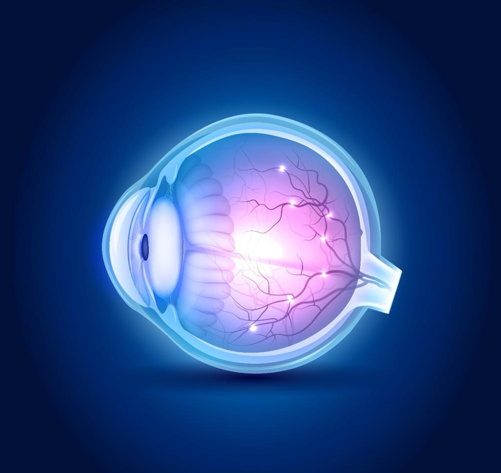 autres pathologies en ophtalmologie